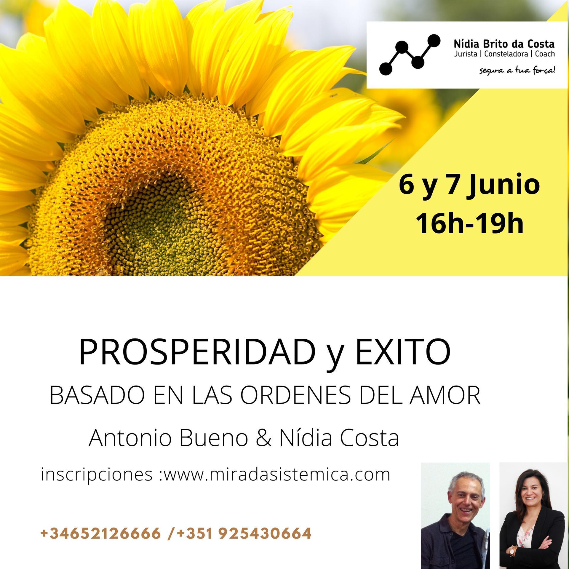 Prosperidad y exito 6 y 7 de junio - Mirada Sistémica