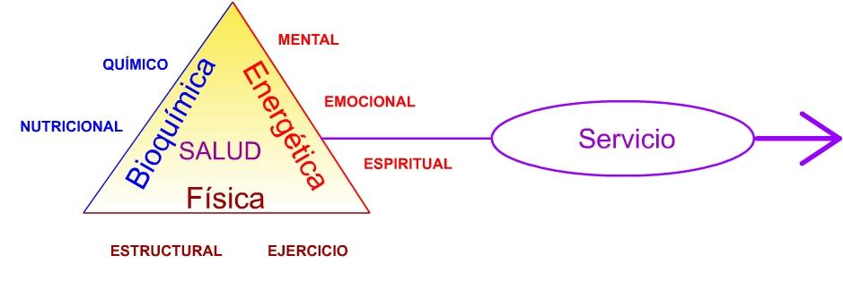 Triángulo de la salud y el servicio