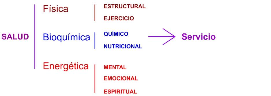 Triángulo de la salud y el servicio esquema