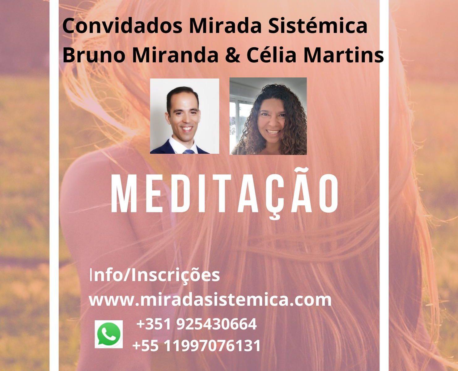 Webinar meditação 23-5- Mirada Sistémica