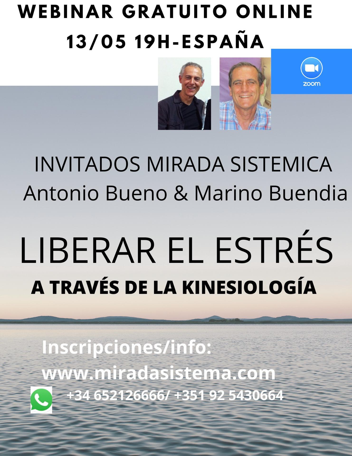 webinar kinesiología 13-5- Mirada Sistémica