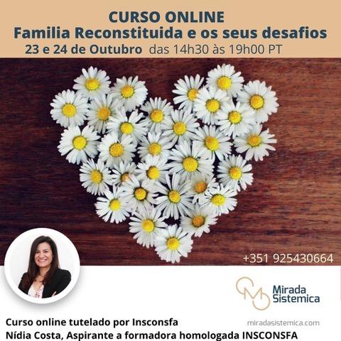 Família Reconstituída Online- Mirada Sistémica